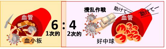 ストーム コロナ ウイルス サイトカイン 新型コロナウイルス(SARS